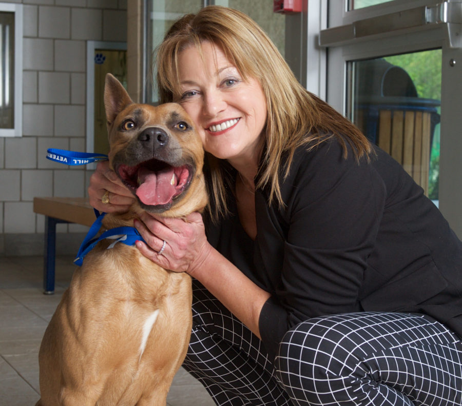 Share This Pet: Grand Prairie ISD Superintendent Offers to Cover Dog's Adoption Fee