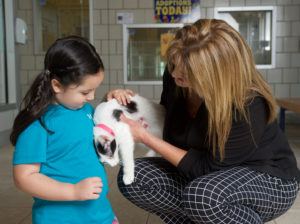 GPISD Superindendent Susan Hull an Grand Prairie resident Addison Chakery pose with a cat available for adoption at Prairie Paws. (DFW Mag)